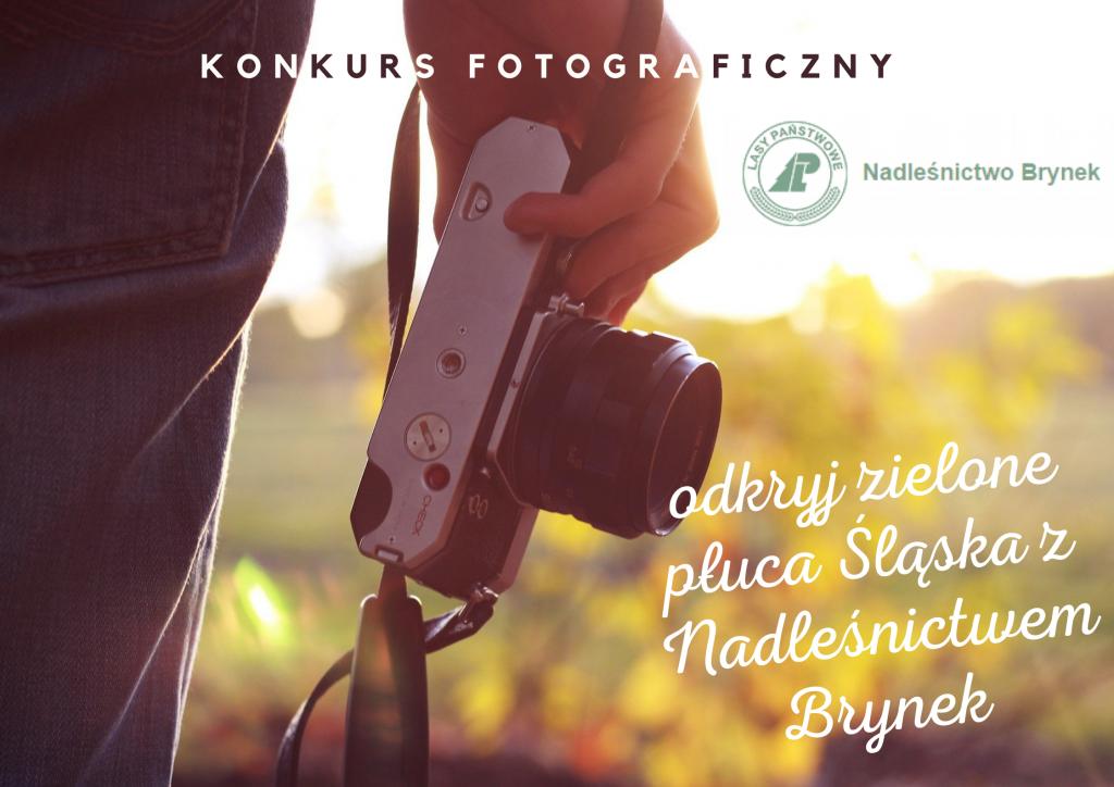 aparat fotograficzny w dłoni osoby wpatrzonej w naturę